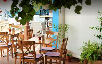 1479739444_laCarmencitaRestaurantPuertodelCarmen.jpg'