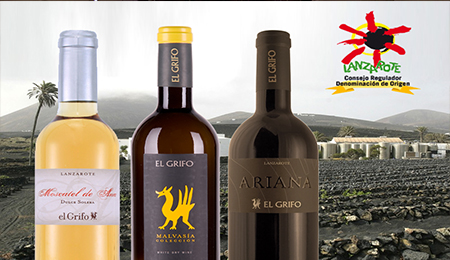 The Best Lanzarote Wine Tours - El Griffo Wine Tasting