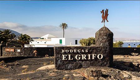 Visit La Bodega El Grigo - Wine Experience Lanzarote